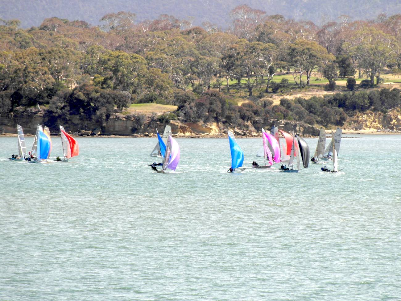 Spinnakers up